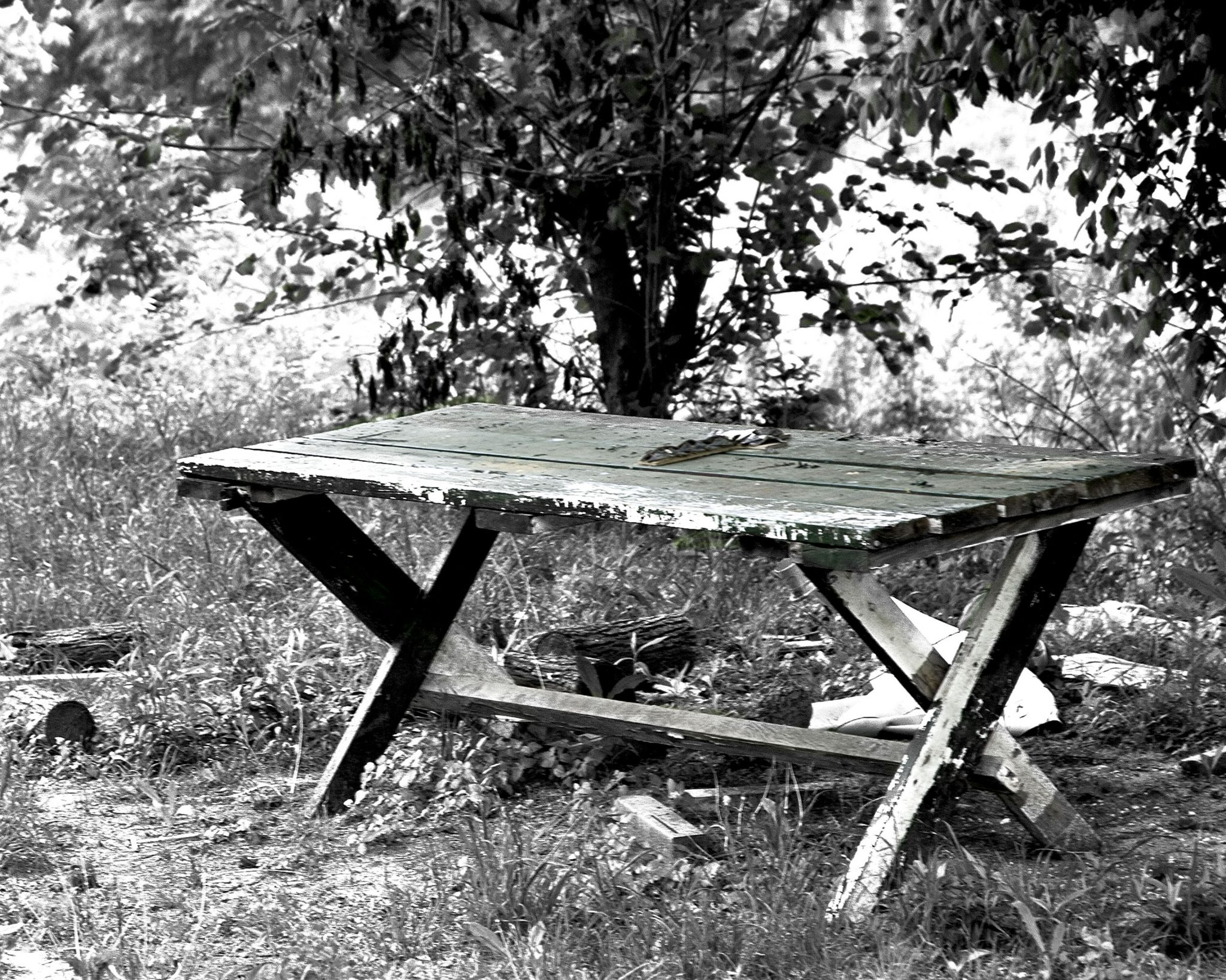 picnic table from the Lost Trailer Park series